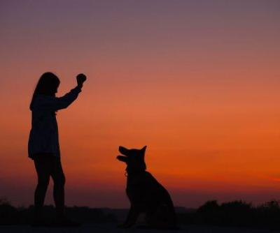 Fit Together - Dog And Owner