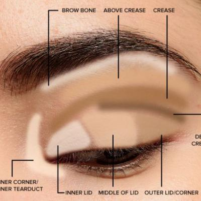 Makeup Tips for Beginners: Basic Eyeshadow Placement & Eye Makeup Diagram