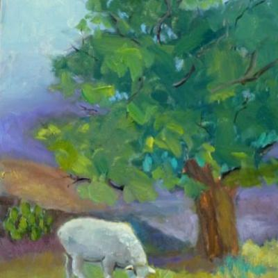 Plein Air Oil Workshop Fredericksburg, TX with Guido Frick by Texas Artist Nancy Standlee