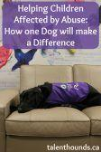 Helping Children Affected by Abuse, How One Dog Will Make a Difference