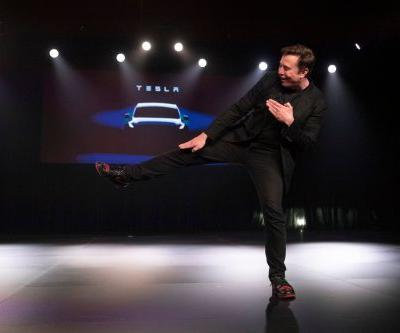 Elon Musk wore custom Tesla-branded Jordan sneakers made of python skin at the company's Model Y unveiling