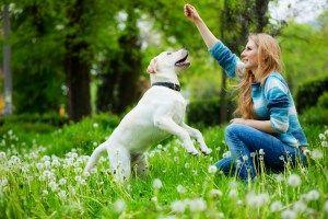 What is Glucosamine and How Can It Help My Dog?