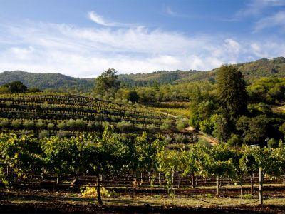 California's lesser-known wine hotspot was named best small town to visit in America - take a look