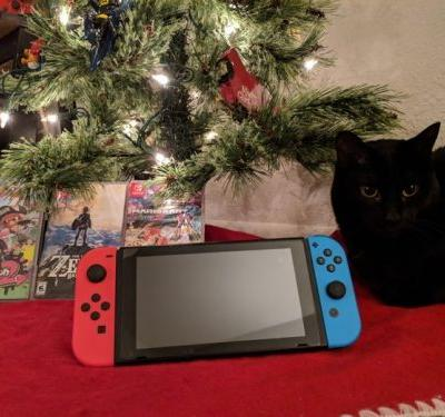 What to include when gifting a Nintendo Switch this season