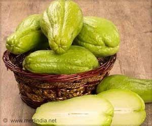 New Hybrid Chayote Fruit from Mexico Can Fight Cancer