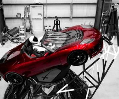 Looks like this SpaceX dummy will ride Musk's Tesla Roadster into space tomorrow