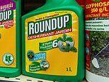 Weedkiller chemical increases the risk of cancer 'by up to 41 per cent', study finds
