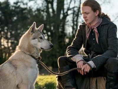 Why Outlander's Rollo Is Not the Irish Wolfhound You Pictured From the Books