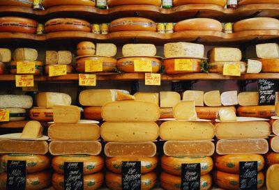 The definitive ranking of cheeses from worst to best just in time for National Cheese Lovers Day