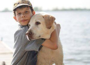 8 Best Dog Breeds For Families With Children