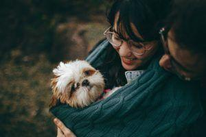Does Your Dog Prefer Baby Talk? Signs Point to Yes
