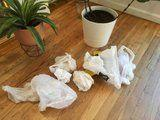 I Lived Waste-Free For 1 Week -Here's What I Learned