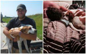 Trucker Sees Dog Dodging Traffic & Does More Than Just Save His Life