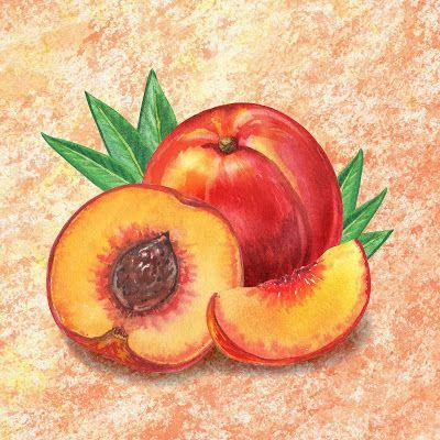 Delicious Still Life Paintings - Decorative and Classic