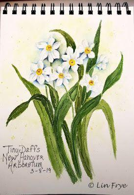 Journal - Tiny Daffodils