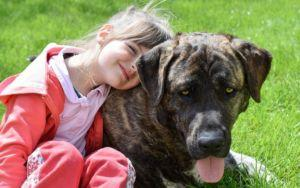 New Study Shows That Dogs May Reduce Risk Of Childhood Eczema And Reduce Asthma Symptoms