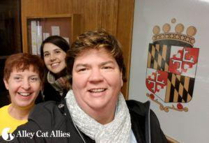 Anne Arundel County Celebrates Community Cat Advocates and a New Ordinance