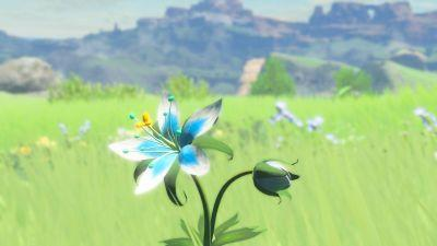 Zelda: Breath of the Wild is Nintendo's last Wii U game, not that this should surprise you