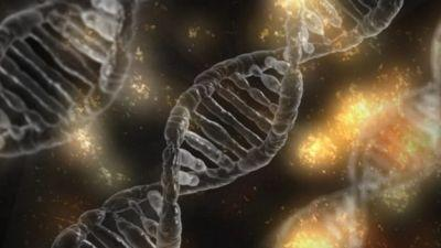 Scientists: Malware-Infused DNA Not Present Threat