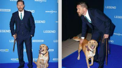 Tom Hardy Shares Moving Tribute After His Rescue Dog Dies