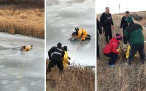 Rescue Workers Pull Dog Trapped In Frozen Creek To Safety