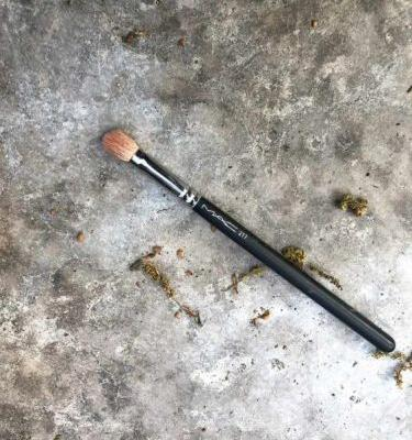 The Mystery of the MAC 217 Brush