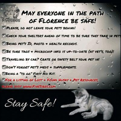 May All Be Safe In Hurricane Florence's Path & Our FiveSibes Safety Tips