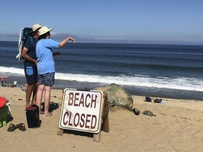 Swimmer Dead After Shark Attack On Cape Cod