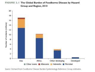 Unsafe food in LMICs costs $110 billion a year - World Bank