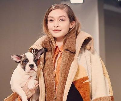 Puppies are officially the season's cutest accessory