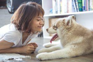 Survey Shows Dog People Love Dogs More Than People