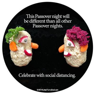 Passover during the 11th plague: Celebrate!