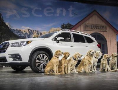 Golden Opportunity: 2019 Subaru Ascent Starts Just under $33,000