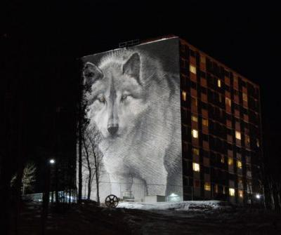 This land is your land, this land is my land: Can we coexist with wolves and kin?