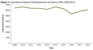 Scotland reports Campylobacter infections up, Salmonella cases down