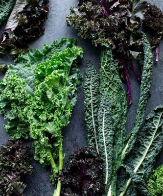 Produce Spotlight: The Ultimate Guide to Kale
