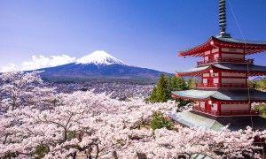 Japan rise its tourism high in this year