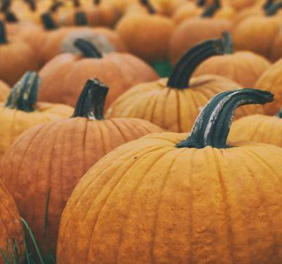 Fall is here! 5 Home Beauty Uses for Pumpkin