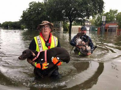 Social Media, Interactive Maps Tapped to Aid Harvey Rescue Efforts
