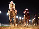 Exclusive for MoS readers: See the Dubai World Cup 2020 with Frankie Dettori