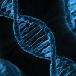 Gene Therapy and September Scenes