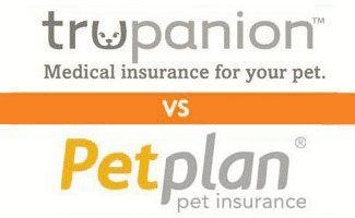 Trupanion vs Petplan: Price, Coverage, and More, Compared