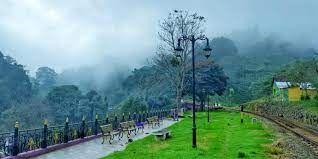 Tourism to the Nilgiris declines by almost 70% since January this year