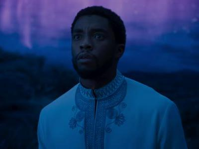 Black Panther Just Crossed Another Box Office Milestone