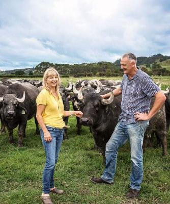 Clevedon Buffalo Co named Supreme Winner of the Outstanding NZ Food Producer Awards
