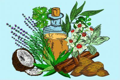 The Best Essential Oils for Your Beauty Routine