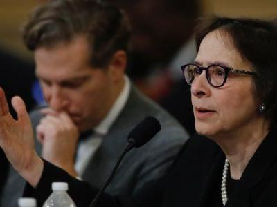 Stanford Law professor Pamela Karlan used an analogy involving a disaster in Texas to break down why she thinks Trump should be impeached