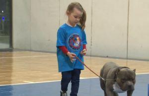Junior Dog Handlers Work To Debunk Stereotypes About Bully Breeds