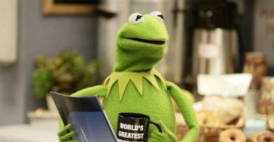 Fired Kermit the Frog Actor Says He was 'Outspoken,' Disney Blames 'Unacceptable Business Conduct'
