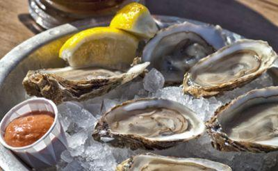 Raw oyster consumption continues, as do vibriosis outbreaks